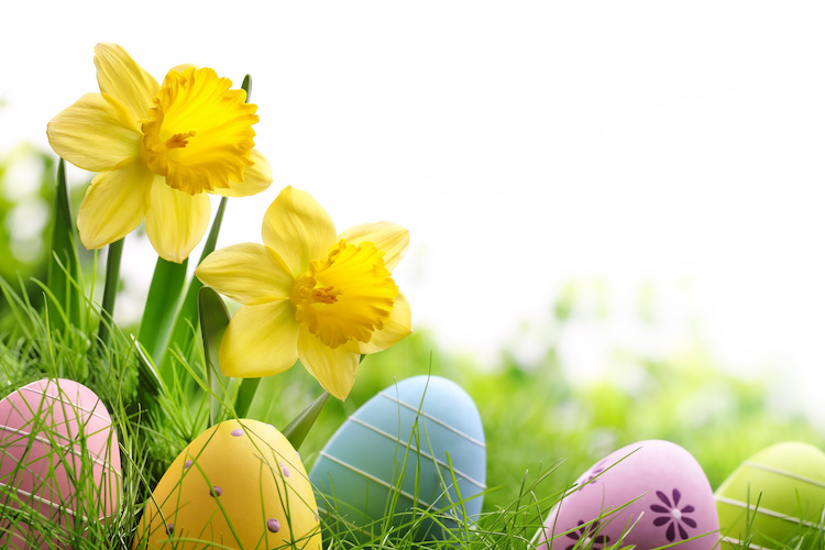 Celebrate Easter Holidays in Padstow